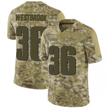 Youth Nike Philadelphia Eagles Brian Westbrook Camo 2018 Salute to Service Jersey - Limited
