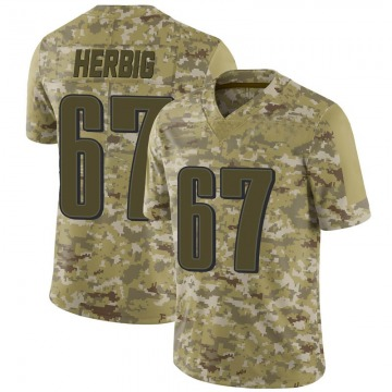 Youth Nike Philadelphia Eagles Nate Herbig Camo 2018 Salute to Service Jersey - Limited